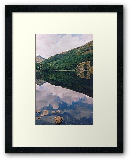 Lake - Wales  by Carl Gaynor