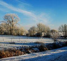 A hoarfrost winter scene at Amerongen by jchanders