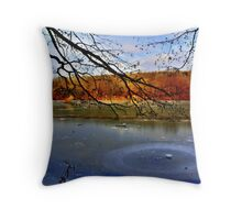 Wintry lake Throw Pillow