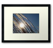 Evening on the Patuxent Framed Print