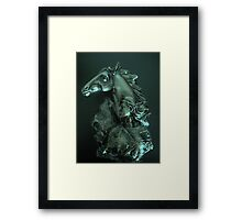 Horse Woman Framed Print