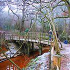 Poohsticks Bridge by Tony Hadfield