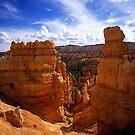 Bryce Canyon Hoodoos by Brian Hendricks