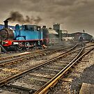 Embsay and Bolton Abbey Steam Railway by Steve  Liptrot