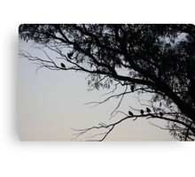 Birds in the tree Canvas Print
