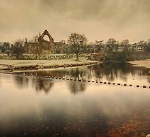 Stepping Stones on the River Wharfe by Steve  Liptrot