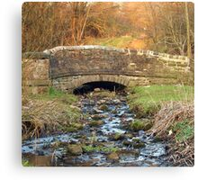 Little Bridge Canvas Print