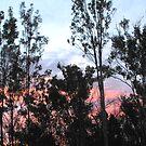 A Bluff Sunrise by 4spotmore