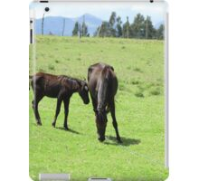 Mare and Colts on a Hill iPad Case/Skin