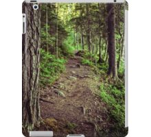 RANDOM PROJECT 15 [iPad cases/skins] iPad Case/Skin