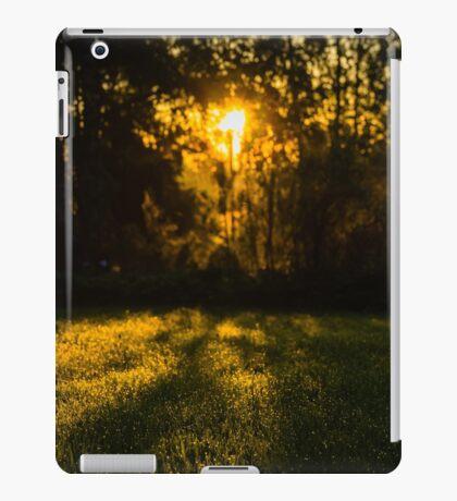 RANDOM PROJECT 6 [iPad cases/skins] iPad Case/Skin
