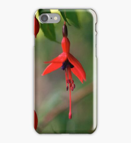 Fuchsia - iPhone iPhone Case/Skin