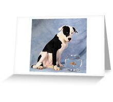 You have got to be kidding!  Greeting Card