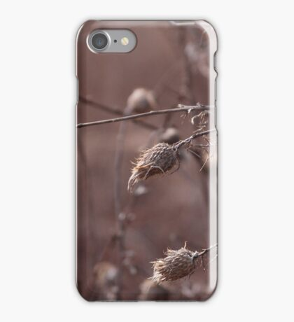 Spring Seeds iPhone Case/Skin