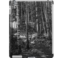 RANDOM PROJECT 66 [iPad cases/skins] iPad Case/Skin