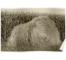 Hay Bale and Corn Field Poster