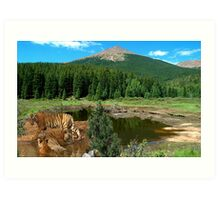 1100-Favorite Water Hole Art Print