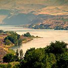 Columbia River by Cricket Jones