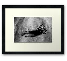 Linear Sculpture - second series #5 Framed Print