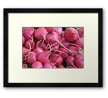 Radish Framed Print