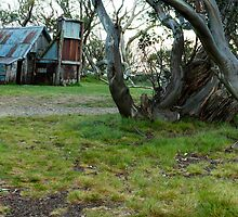 Wallaces Hut - Victoria by Michael Olive