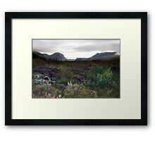 Land - A View  Framed Print