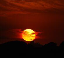 Millennium Sunrise Silhouette - Nobbys Newcastle  by Bev Woodman