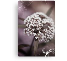 Low lit white flower Canvas Print