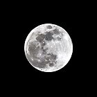 First Full Moon by flyfish70