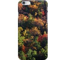 A Slice of Fall iPhone Case/Skin