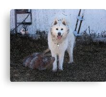 Dogs at Play Canvas Print