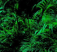 tropical jungle  by Michael Bisset