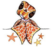 Baby Brown Sea Turtle Starfish by offleashart