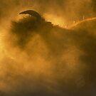 Thunder Beast Makes Fire by WorldDesign