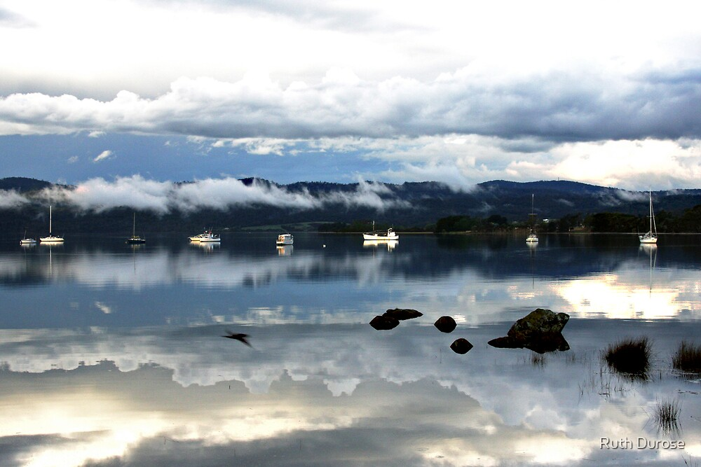 Tamar River Reflections - Tasmania by Ruth Durose