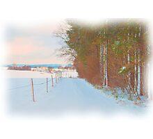 Winter Lane Photographic Print