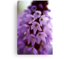 Pretty Purple Posy Canvas Print
