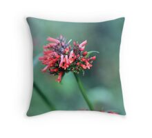 fire bomb Throw Pillow