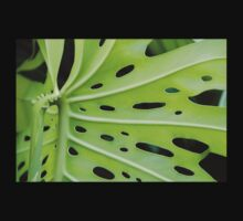 Windowleaf (Monstera deliciosa) T-Shirt