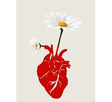 A Growing Heart Photographic Print