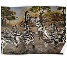 """""""Zebra Stallions"""" - Oil Painting Poster"""