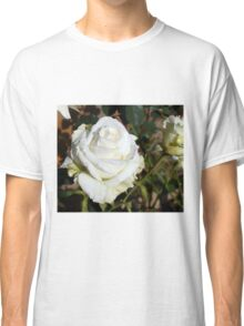 White Rose in the Garden 12 Classic T-Shirt