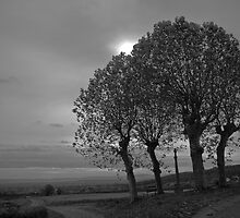 Black and white country-side scene by Patrick Brosset