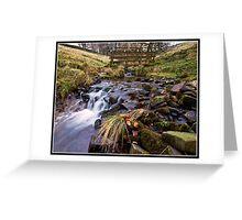 Footbridge and stream near Downham Greeting Card