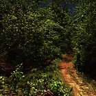 Moonlight at Midnight by RC deWinter