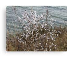 Blackwater Freeze Canvas Print