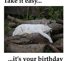 Take it Easy... It's Your Birthday by jojobob