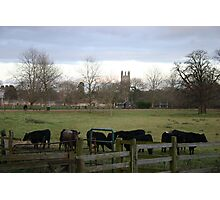 Agricultural College Photographic Print