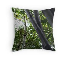 Bamboo :: In Color Throw Pillow