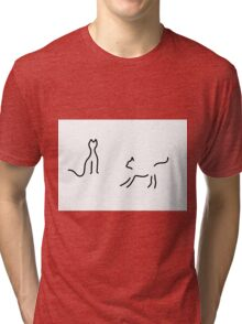 cats play Tri-blend T-Shirt
